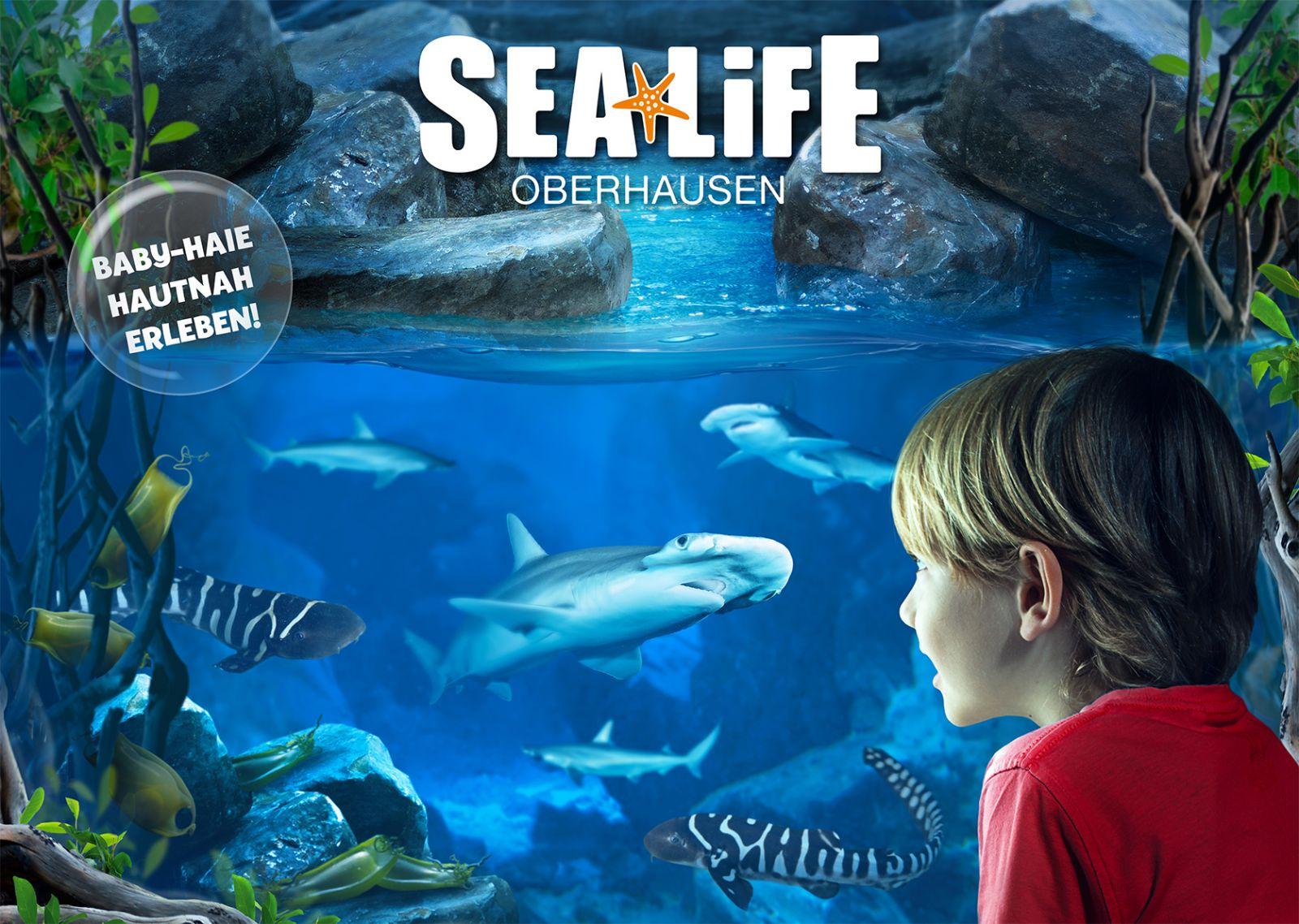 sea life köln
